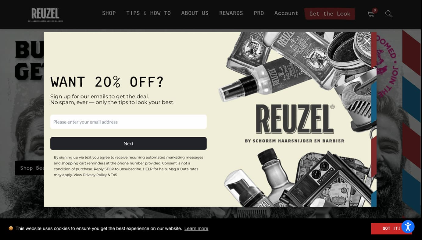 A pop-up form with a 20% discount incentive asking users to provide their valid email addresses.